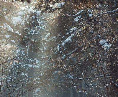 Кузбасские синоптики рассказали о погоде в первые дни весны