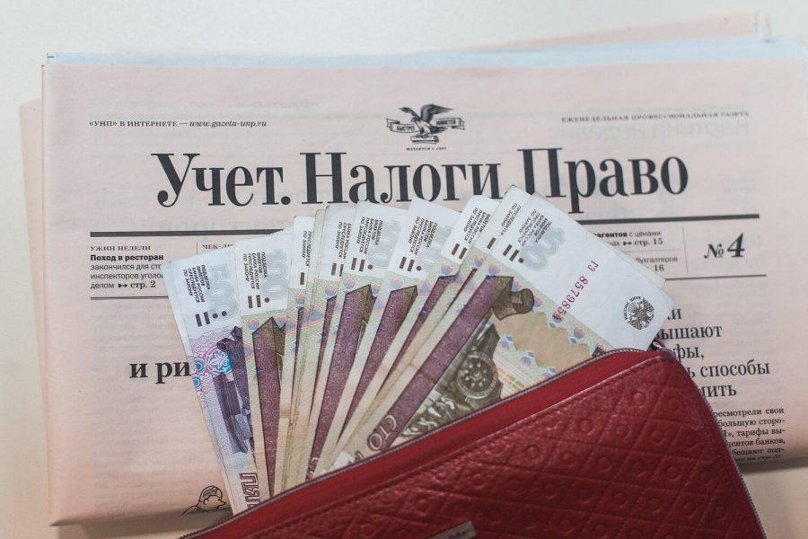 Депутат Госдумы предложил заставить российских домохозяек платить налоги