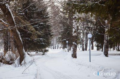 В центре Кемерова сделают трассы для снегоходов и лыжников