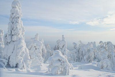 Мороз и гололёд: синоптики рассказали о погоде на понедельник в Кузбассе
