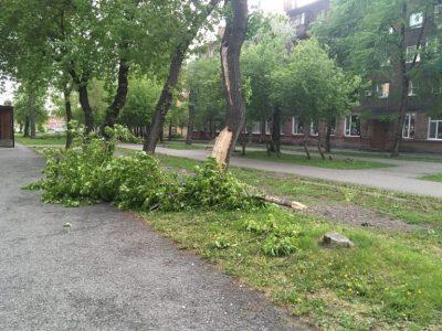 Поваленные деревья, разбитые крыши и авто: фото и видео серьёзного урагана в Кузбассе