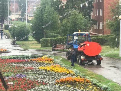 Кемеровские рабочие в дождь вышли поливать городские клумбы