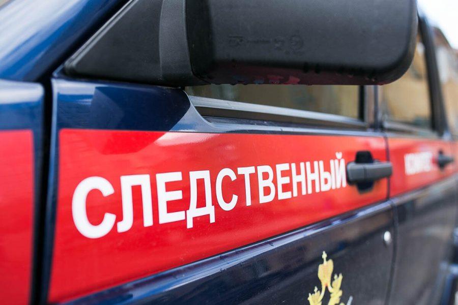 В Кемерове неизвестный на улице надругался над девочкой