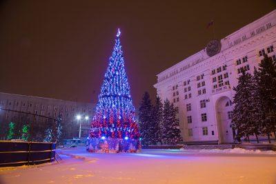 елка, новый год