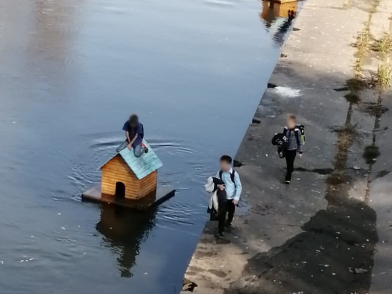 Фото: в Кузбассе дети «угнали» домики для уток