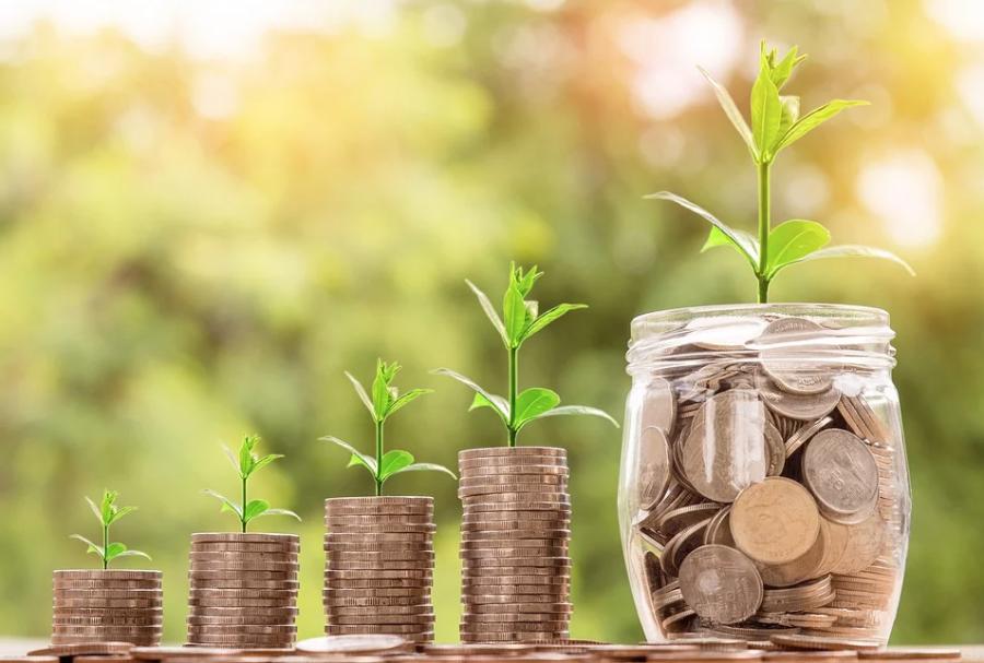 Число экспортно ориентированных компаний МСП выросло на 20% с начала года – Россельхозбанк