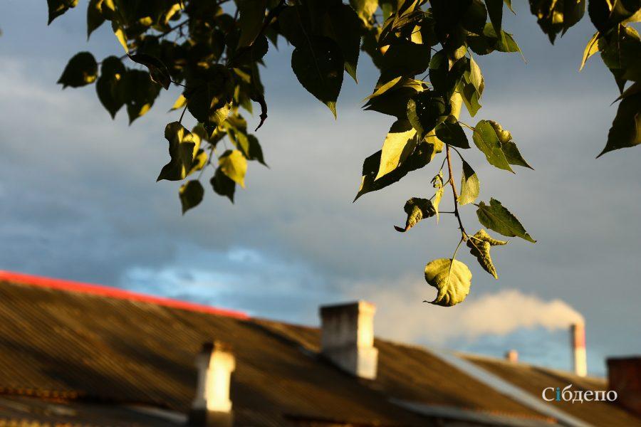 Кузбасс ждут жара и грозы в воскресенье