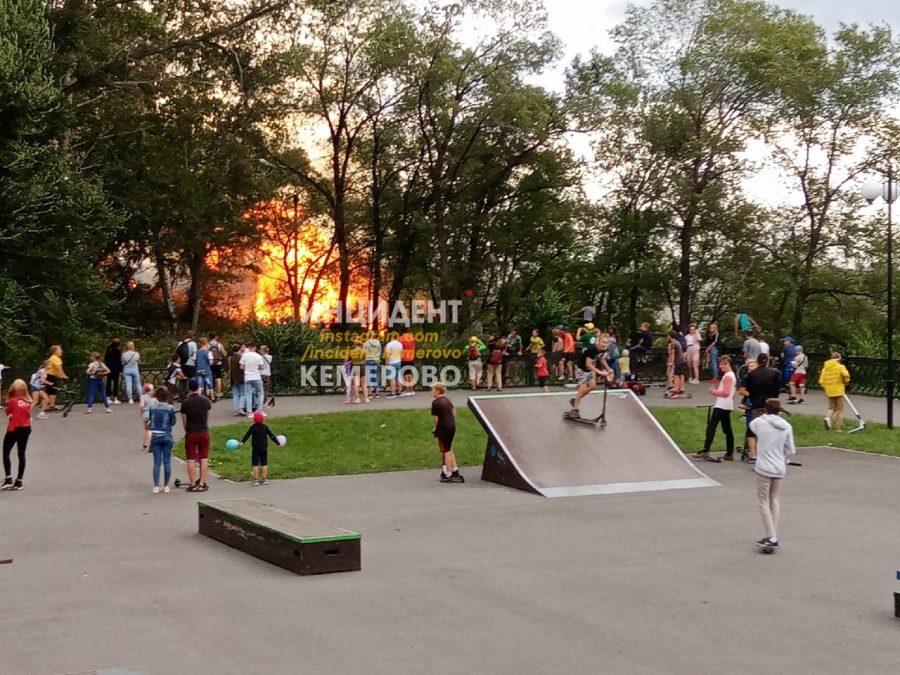 В Кемерове горит лес вблизи набережной
